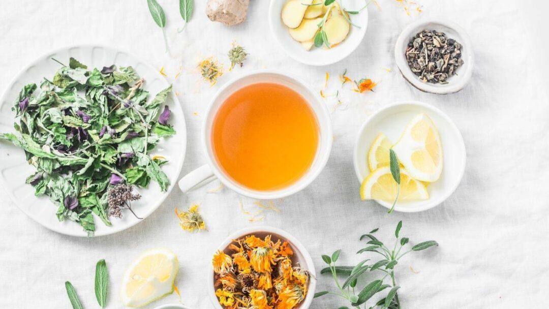 Unterschiedliche Teller, mit getrocknetem Tee, Zitronenscheiben, einer Tasse Tee. Alles Lebensmittel, die beim Detoxen unterstützen sollen.